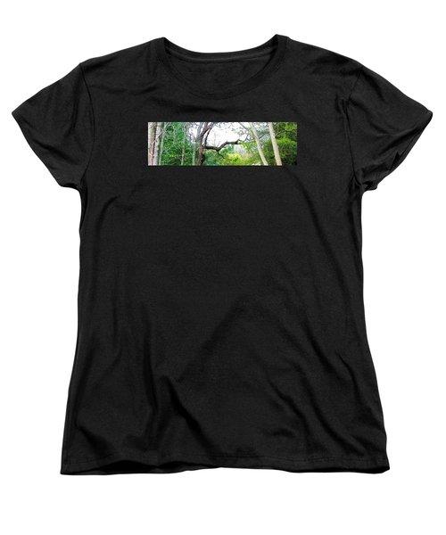 Women's T-Shirt (Standard Cut) featuring the photograph Flying Branch by Pamela Hyde Wilson