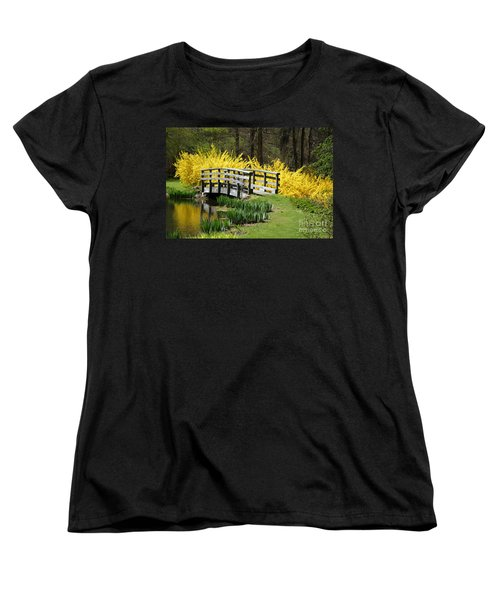 Golden Days Of Spring Women's T-Shirt (Standard Cut) by Living Color Photography Lorraine Lynch