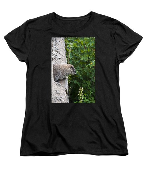 Groundhog Day Women's T-Shirt (Standard Cut) by Bill Cannon