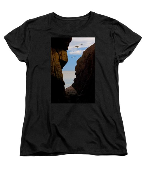 Gulls Of Acadia Women's T-Shirt (Standard Cut) by Brent L Ander