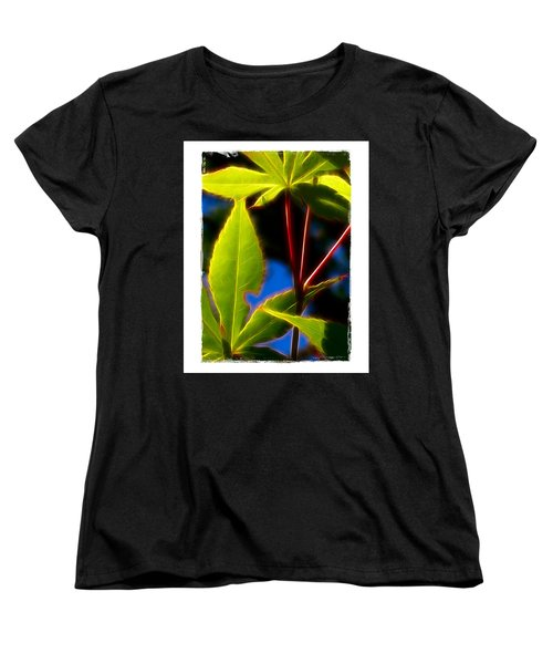 Japanese Maple Leaves Women's T-Shirt (Standard Cut) by Judi Bagwell