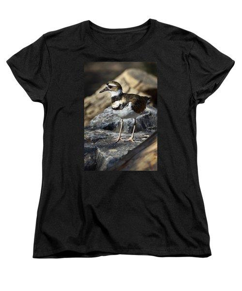 Killdeer Women's T-Shirt (Standard Cut) by Saija  Lehtonen