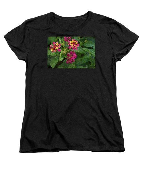 Women's T-Shirt (Standard Cut) featuring the photograph Lantana by Joseph Yarbrough
