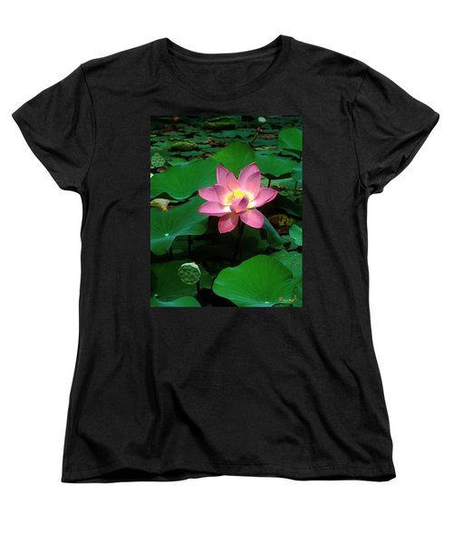Lotus Flower And Capsule 24a Women's T-Shirt (Standard Cut) by Gerry Gantt