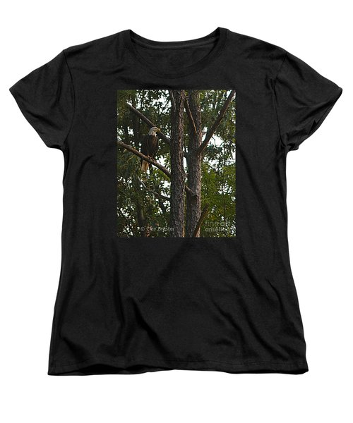 Women's T-Shirt (Standard Cut) featuring the photograph Majestic Bald Eagle by Clayton Bruster