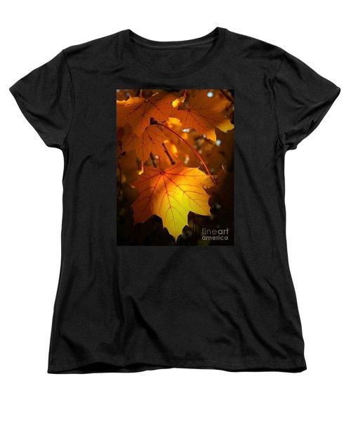 Maple At First Light Women's T-Shirt (Standard Cut) by Sue Stefanowicz
