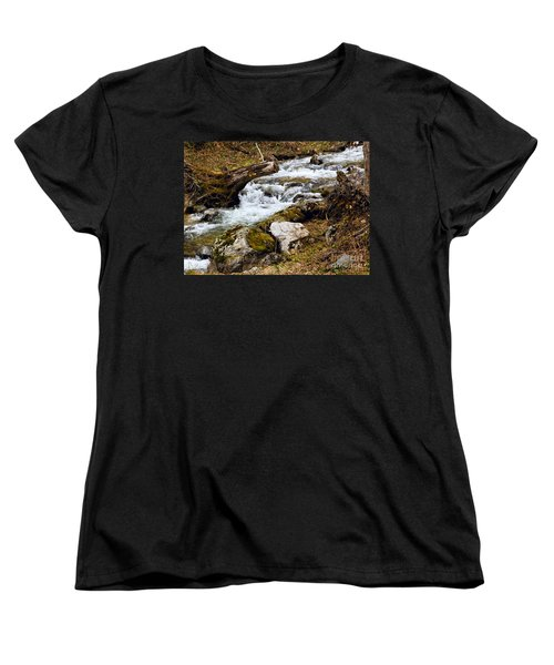 Women's T-Shirt (Standard Cut) featuring the photograph Mountain Stream by Les Palenik
