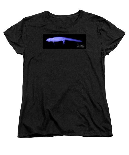 Newt Women's T-Shirt (Standard Cut) by Ted Kinsman