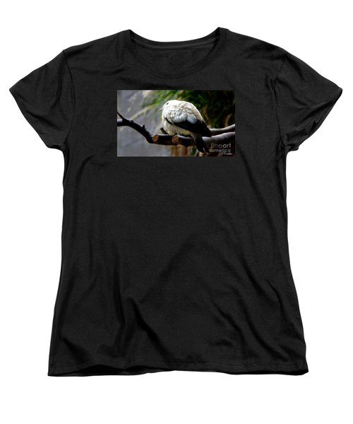 Women's T-Shirt (Standard Cut) featuring the photograph Pied Imperial Pigeon by Davandra Cribbie