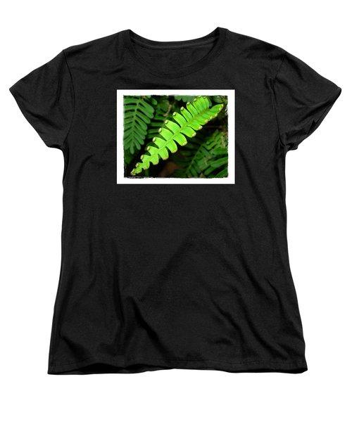 Polypody Women's T-Shirt (Standard Cut) by Judi Bagwell