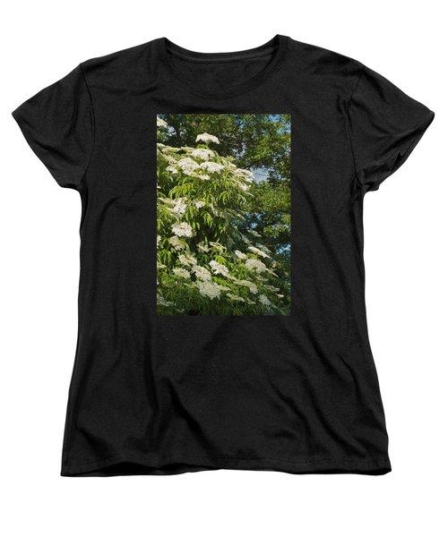 Women's T-Shirt (Standard Cut) featuring the photograph Potchen's Cascade by Joseph Yarbrough