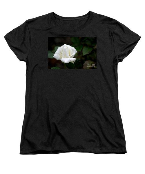 Pure As Snow Women's T-Shirt (Standard Cut) by Living Color Photography Lorraine Lynch