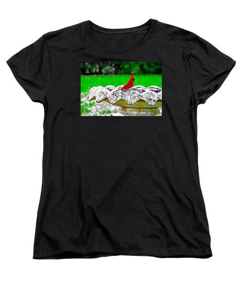 Red Bird In Bath Women's T-Shirt (Standard Cut) by Tom Culver