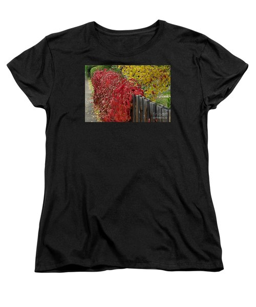 Red Fence Women's T-Shirt (Standard Cut) by Dorrene BrownButterfield
