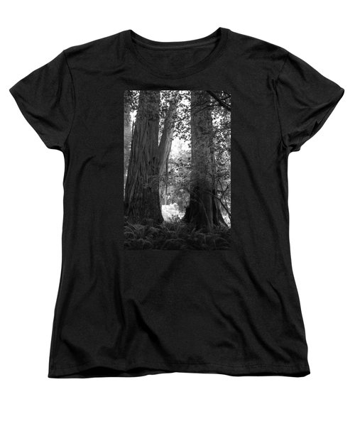 Redwood Pair Women's T-Shirt (Standard Cut) by Kathleen Grace