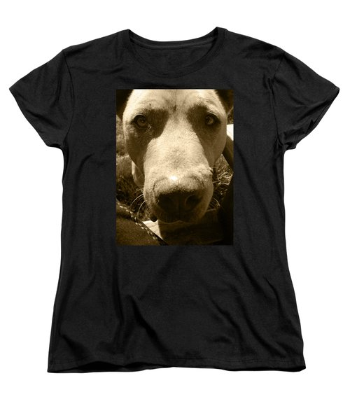 Women's T-Shirt (Standard Cut) featuring the photograph Roscoe Pitbull Eyes by Kym Backland