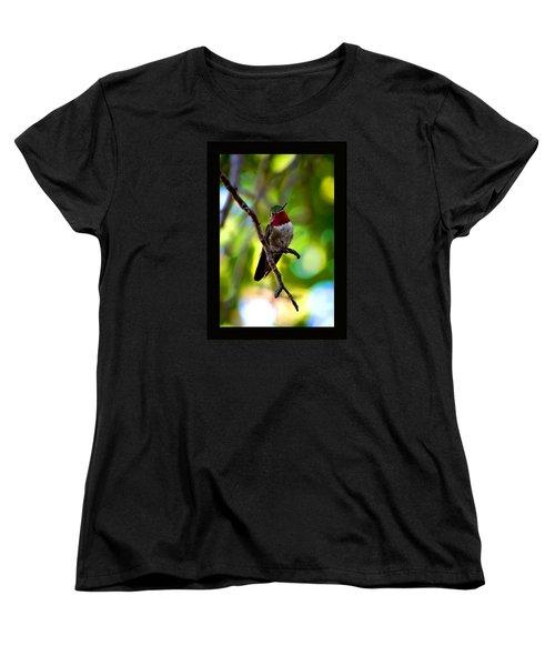 Ruby Throated Hummingbird Women's T-Shirt (Standard Cut) by Susanne Still