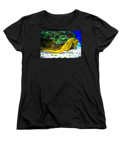 Yellow Seahorse Women's T-Shirt (Standard Cut) by Toni Hopper