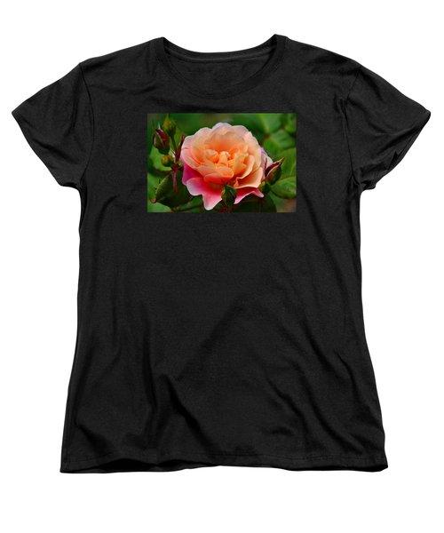 Sherbet Rose Women's T-Shirt (Standard Cut) by Bonnie Myszka
