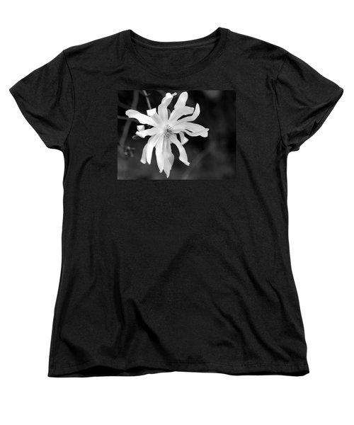 Star Magnolia Women's T-Shirt (Standard Cut) by Lisa Phillips
