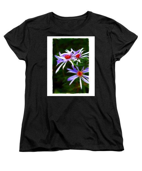 Stars Of Spring Women's T-Shirt (Standard Cut) by Judi Bagwell