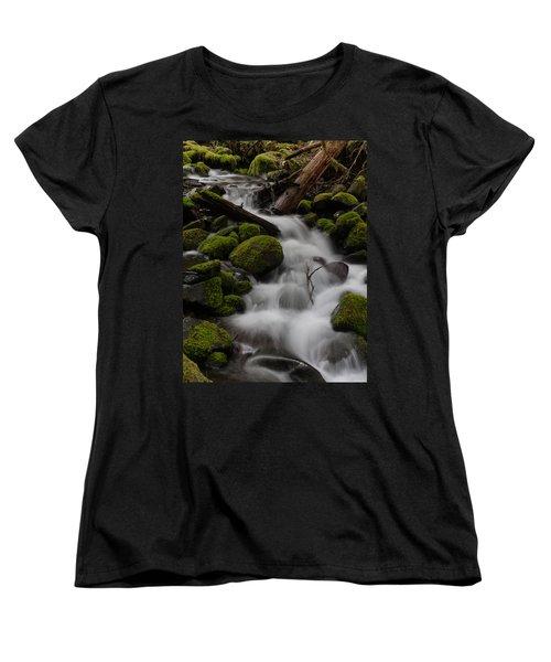 Stepping Stones Women's T-Shirt (Standard Cut) by Mike Reid