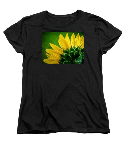 Sunflower Women's T-Shirt (Standard Cut) by Larry Carr