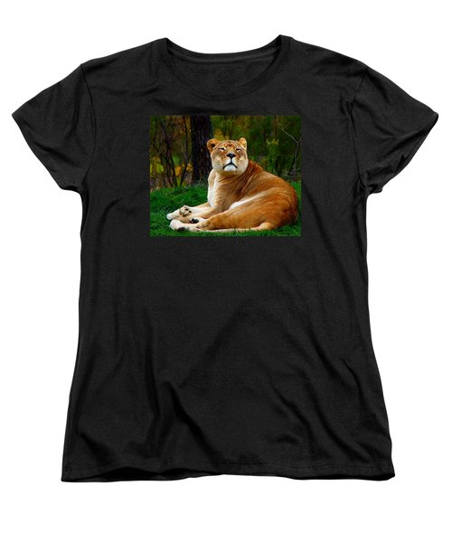 Women's T-Shirt (Standard Cut) featuring the photograph The Lioness by Davandra Cribbie