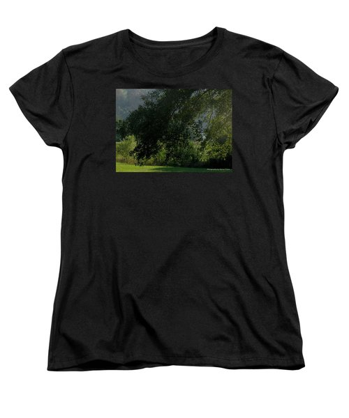 This Ole Tree Women's T-Shirt (Standard Cut) by Maria Urso