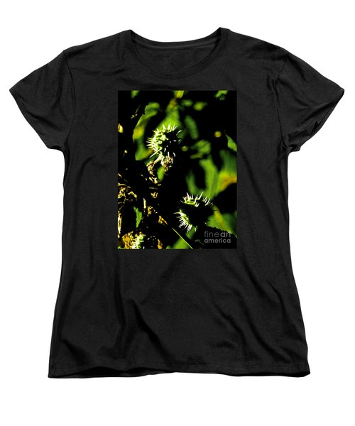 Women's T-Shirt (Standard Cut) featuring the photograph Touched By The Late Afternoon Sun by Steve Taylor
