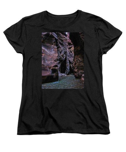 Wadi Mujib Jordan Women's T-Shirt (Standard Cut) by David Gleeson