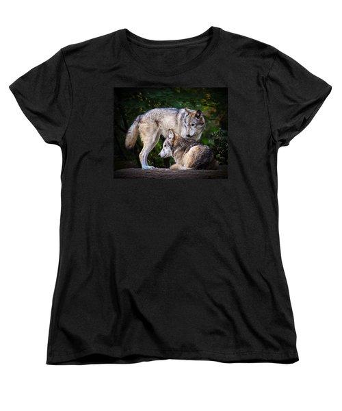 Watching Over Women's T-Shirt (Standard Cut) by Steve McKinzie