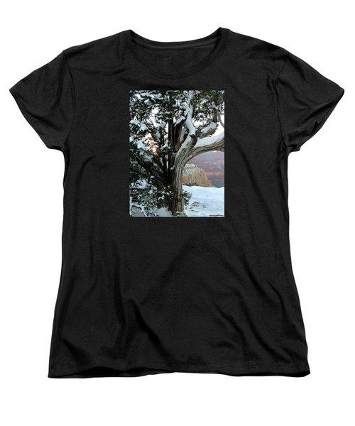 Weather Worn Women's T-Shirt (Standard Cut) by Judy Wanamaker