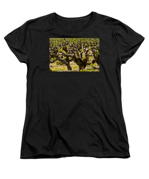 Wine On The Vine Women's T-Shirt (Standard Cut) by Colleen Coccia