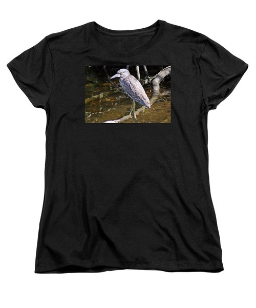 Yelow-crowned Night Heron 1 Women's T-Shirt (Standard Cut) by Joe Faherty