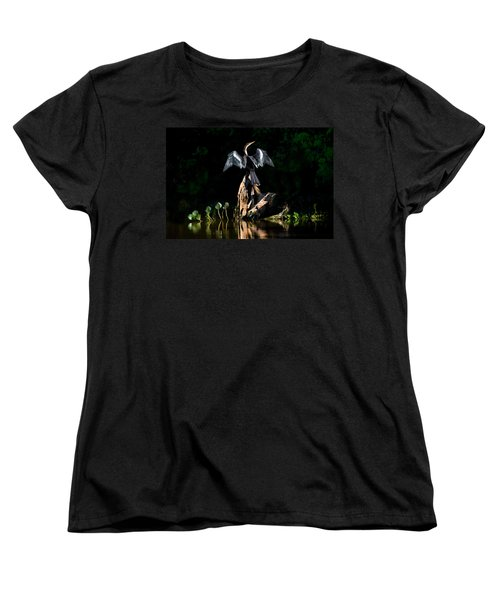 Anhinga Anhinga Anhinga, Pantanal Women's T-Shirt (Standard Cut) by Panoramic Images