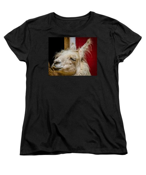 Women's T-Shirt (Standard Cut) featuring the photograph Bad Hair Day 3 by Kathleen Scanlan