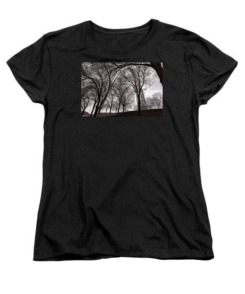Blending In Women's T-Shirt (Standard Cut) by Robert FERD Frank