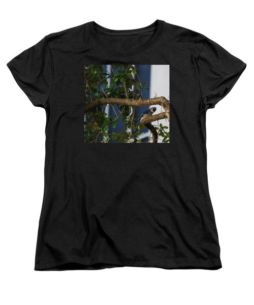 Women's T-Shirt (Standard Cut) featuring the photograph Blue Bird by Rob Hans