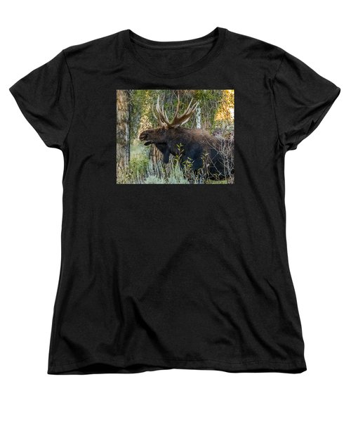 Calling All His Girls Women's T-Shirt (Standard Cut) by Yeates Photography