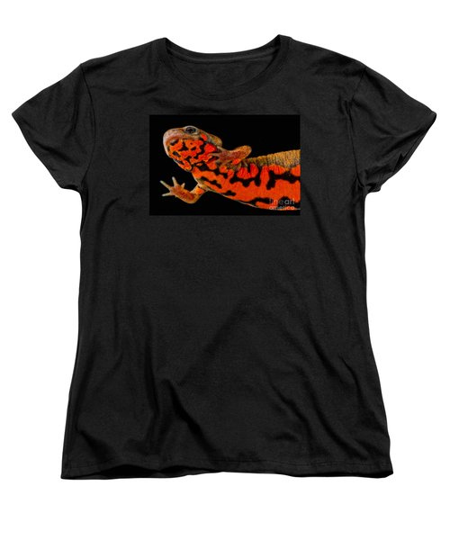 Chuxiong Fire Belly Newt Women's T-Shirt (Standard Cut) by Dant� Fenolio