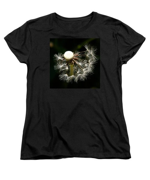 Dandelion Women's T-Shirt (Standard Cut) by Ralph A  Ledergerber-Photography