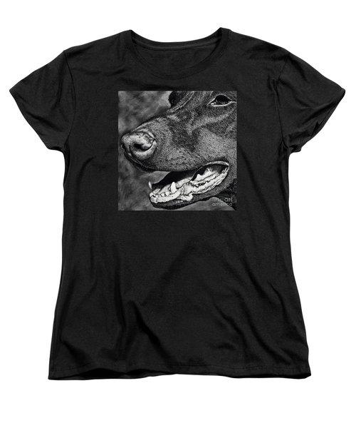 Doberman Face Women's T-Shirt (Standard Cut) by Terri Mills
