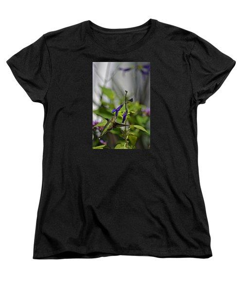Hummingbird Women's T-Shirt (Standard Cut) by Tim Good