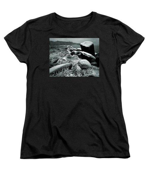 Late Fall Women's T-Shirt (Standard Cut) by Vladimir Kholostykh