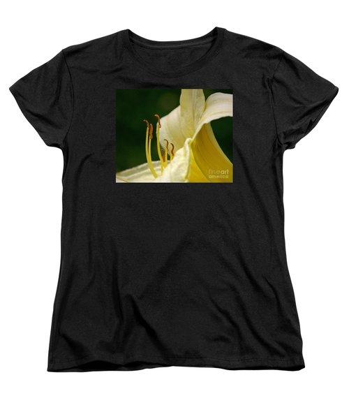 Ready To March Women's T-Shirt (Standard Cut) by Sue Stefanowicz