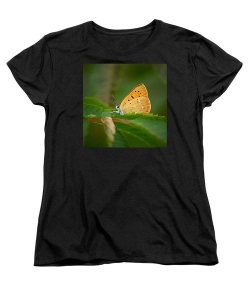 Women's T-Shirt (Standard Cut) featuring the photograph Scarce Copper by Jouko Lehto