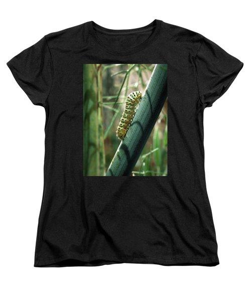 Swallowtail Caterpillar Women's T-Shirt (Standard Cut)