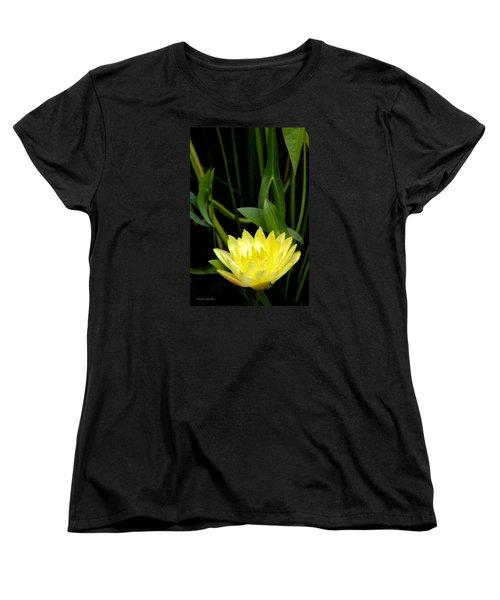 Yellow Lotus Women's T-Shirt (Standard Cut) by Debra     Vatalaro