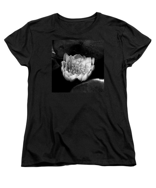 Women's T-Shirt (Standard Cut) featuring the photograph Black And White Flower  by Kevin Blackburn